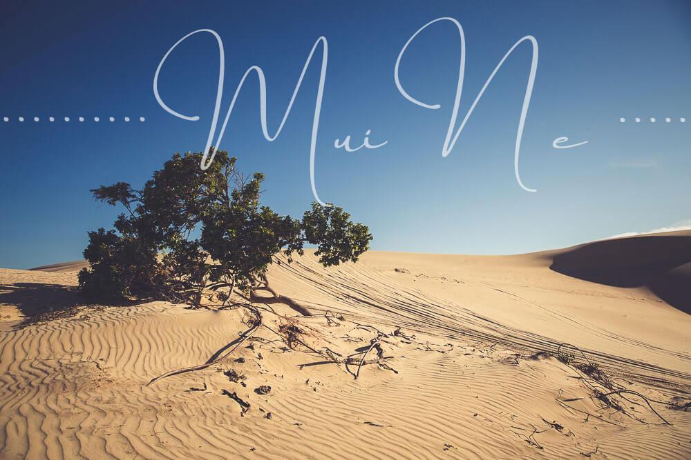Von Mui Ne bis zum Mekongdelta