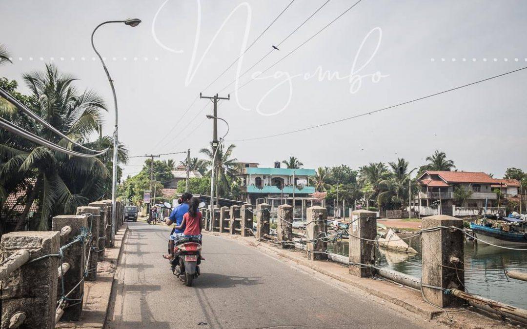 Negombo – Zwischen Fischmarkt und Veggie Burger