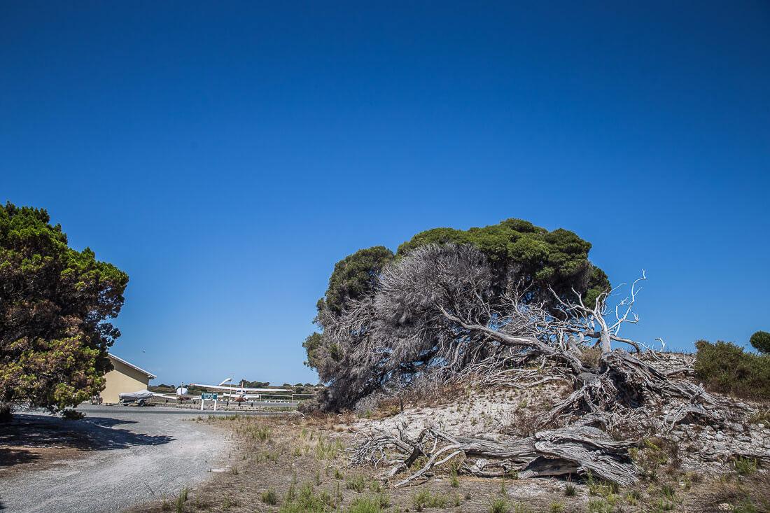 West Australien Rottnest Island