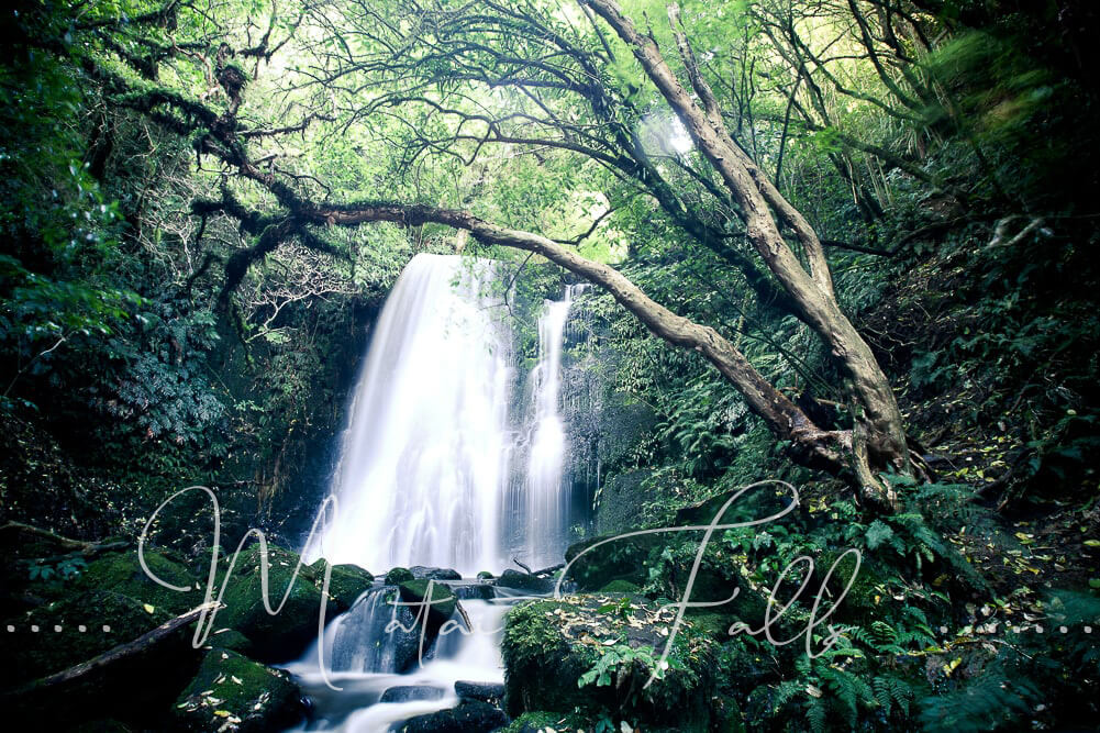 Matai Falls in Neuseeland