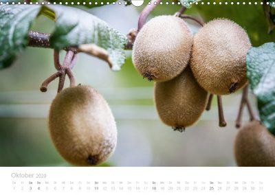 Neuseeland Kalender Oktober
