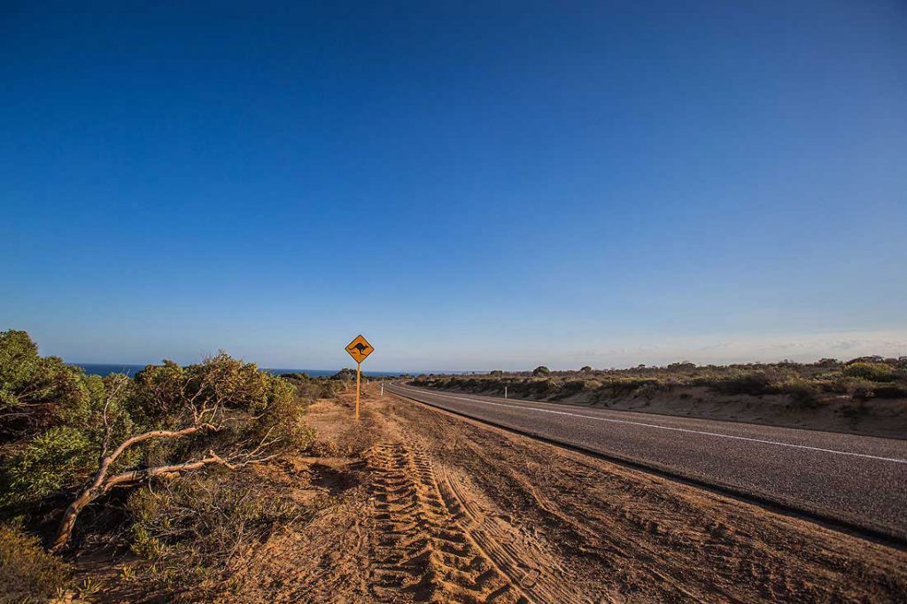Roadsign Känguru, West Australien